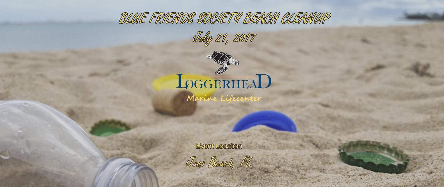 Blue Friends Society Beach Cleanup